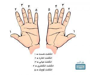 نام انگشتان
